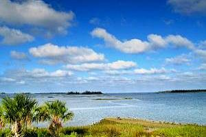 Cedar Key Real Estate